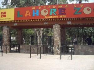 lahore zoo - AlifYAY - main enterence lahore zoo